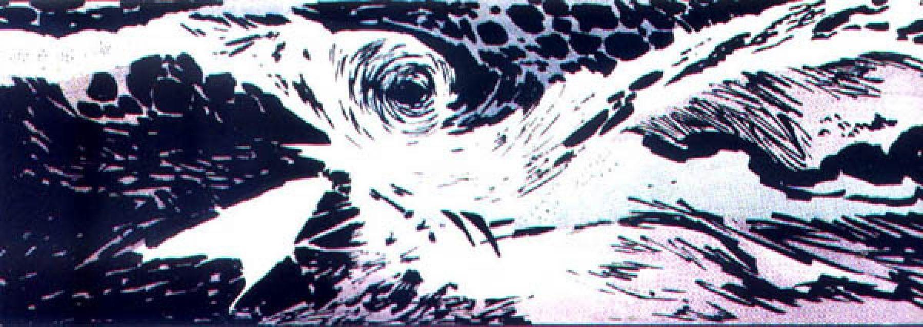 La forza devastante dell'Oceano Pacifico