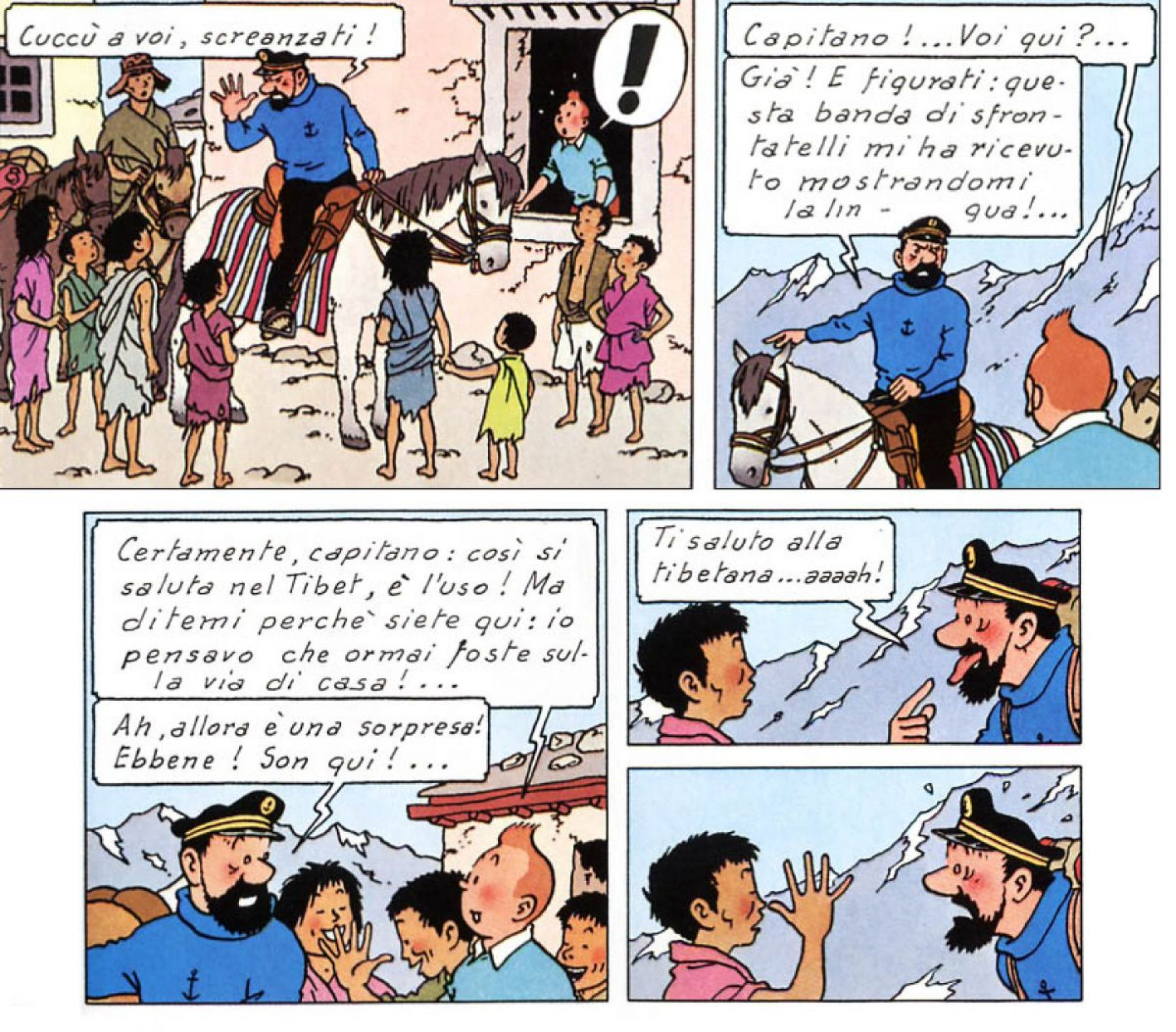 Master in comunicazione interculturale al Capitan Haddock