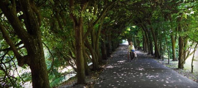Rughe, parco di Oliwa