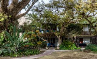 Il Giardino Botanico di Ein Gedi