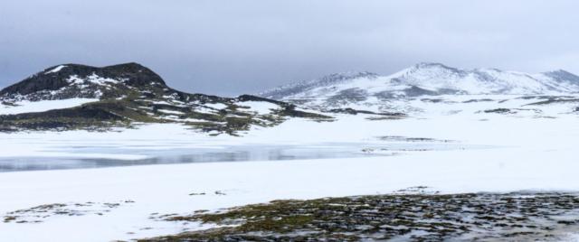 Panorama nei pressi di Bjarnarhöfn