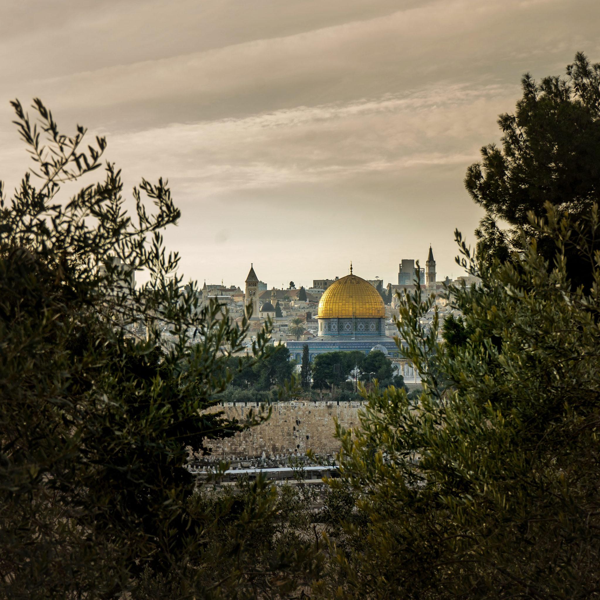 La Cupola della Roccia dal Getsemani
