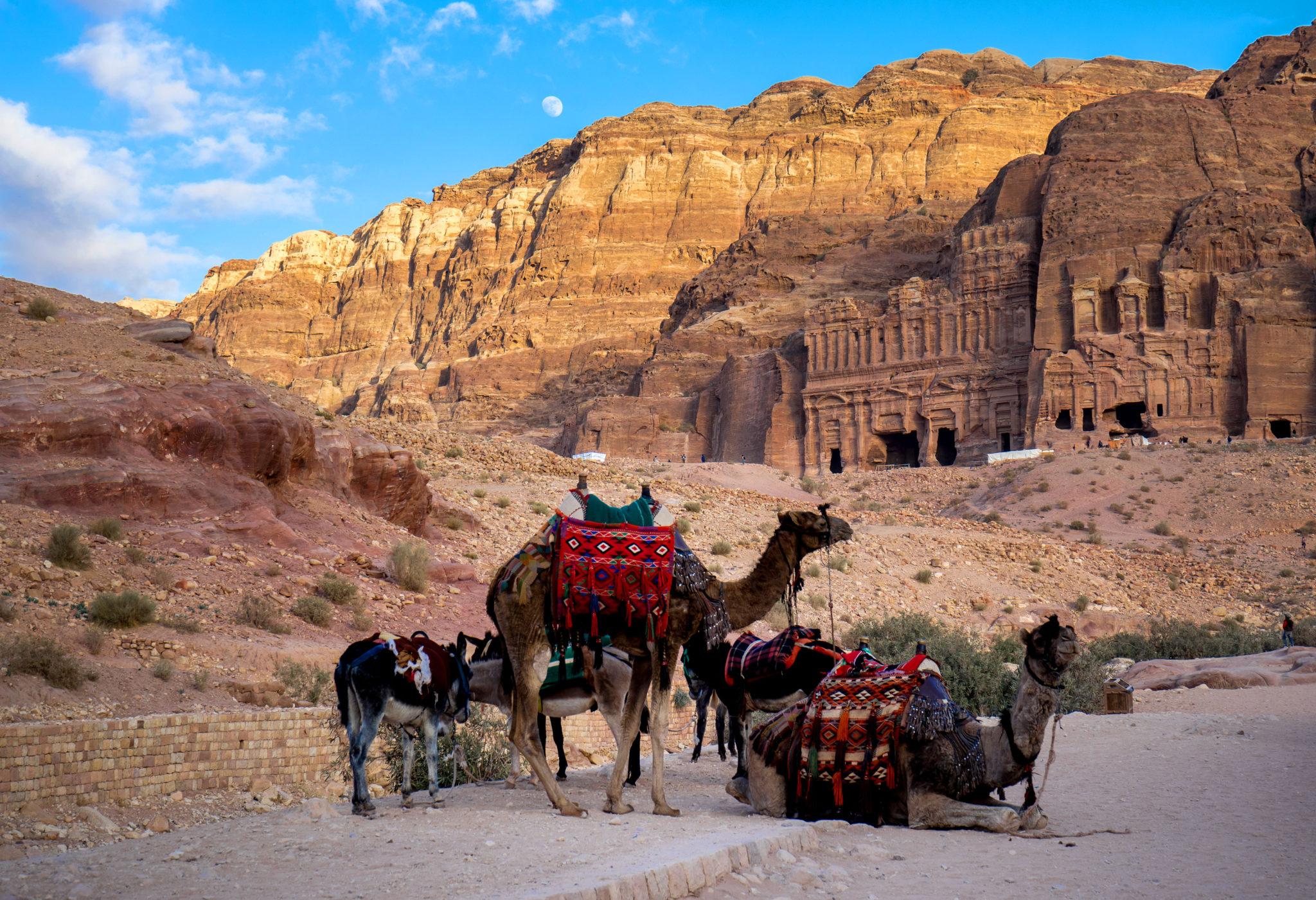 Tombe reali con luna e cammelli